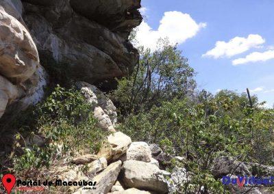 Serra do Pajeú (11)