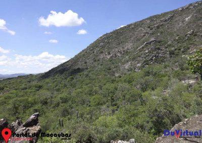 Serra do Pajeú (41)