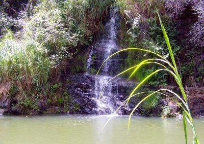 TINGUIS-MACAUBAS